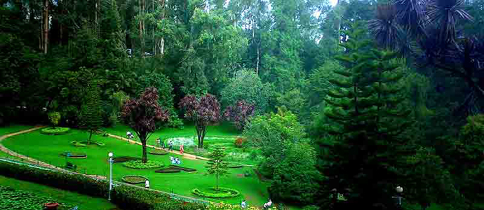 Ooty Potanical Garden